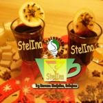 Kafe poslatičarnica StelIna